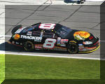Martin Truex Jr. in Daytona