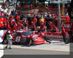 Dale Earnhardt Jr. makig a pit stop in the Budweiser Chevrolet in Las Vegas